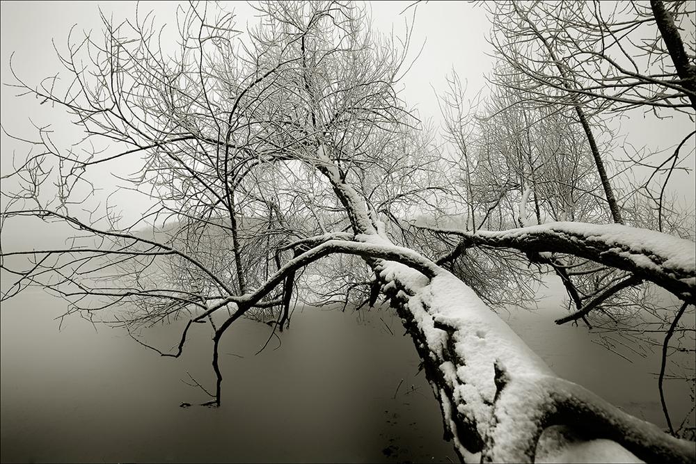 Winter Jensen Park V2.jpg