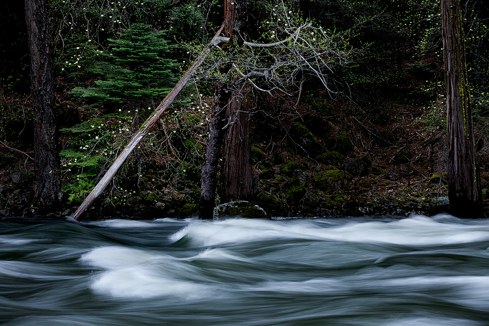 Yosemite Rapids.jpg