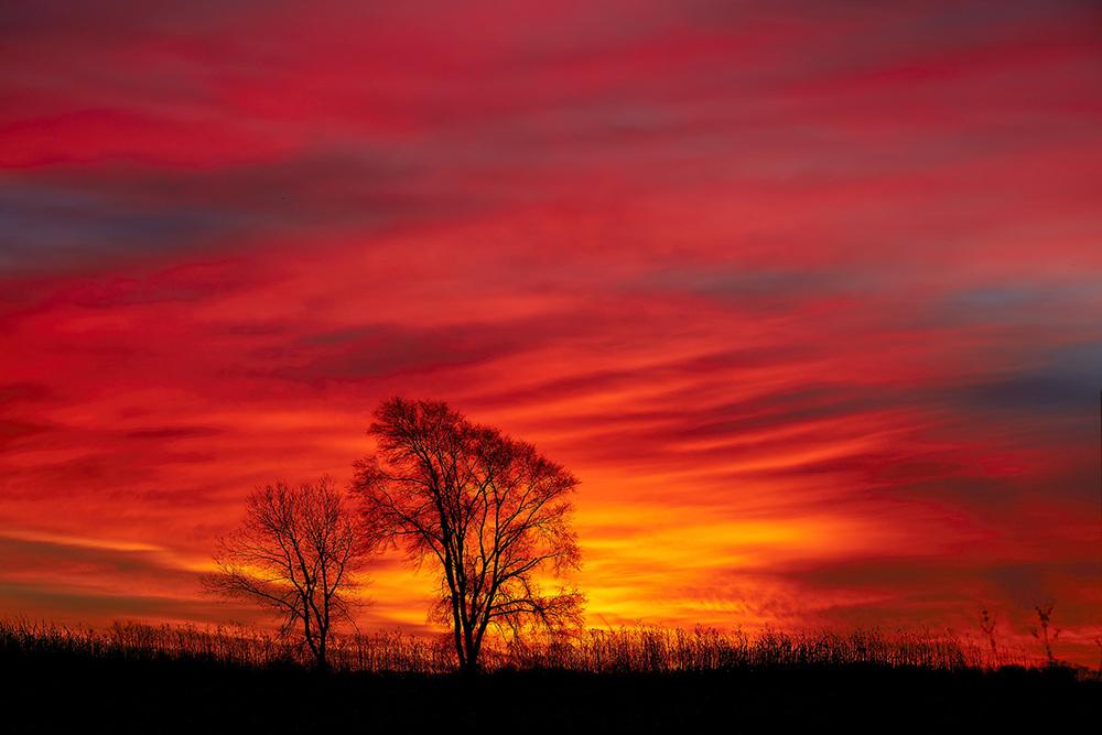 Sunrise-12-08-15_V2.jpg
