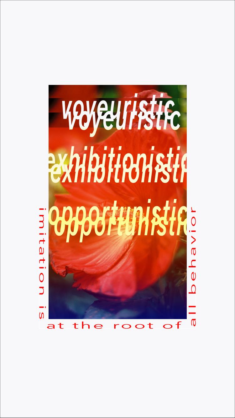 voyeuristic-1.jpg