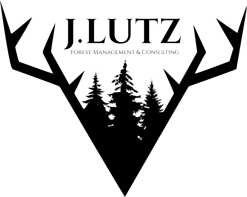 J.Lutz-logo-#2-websize.png