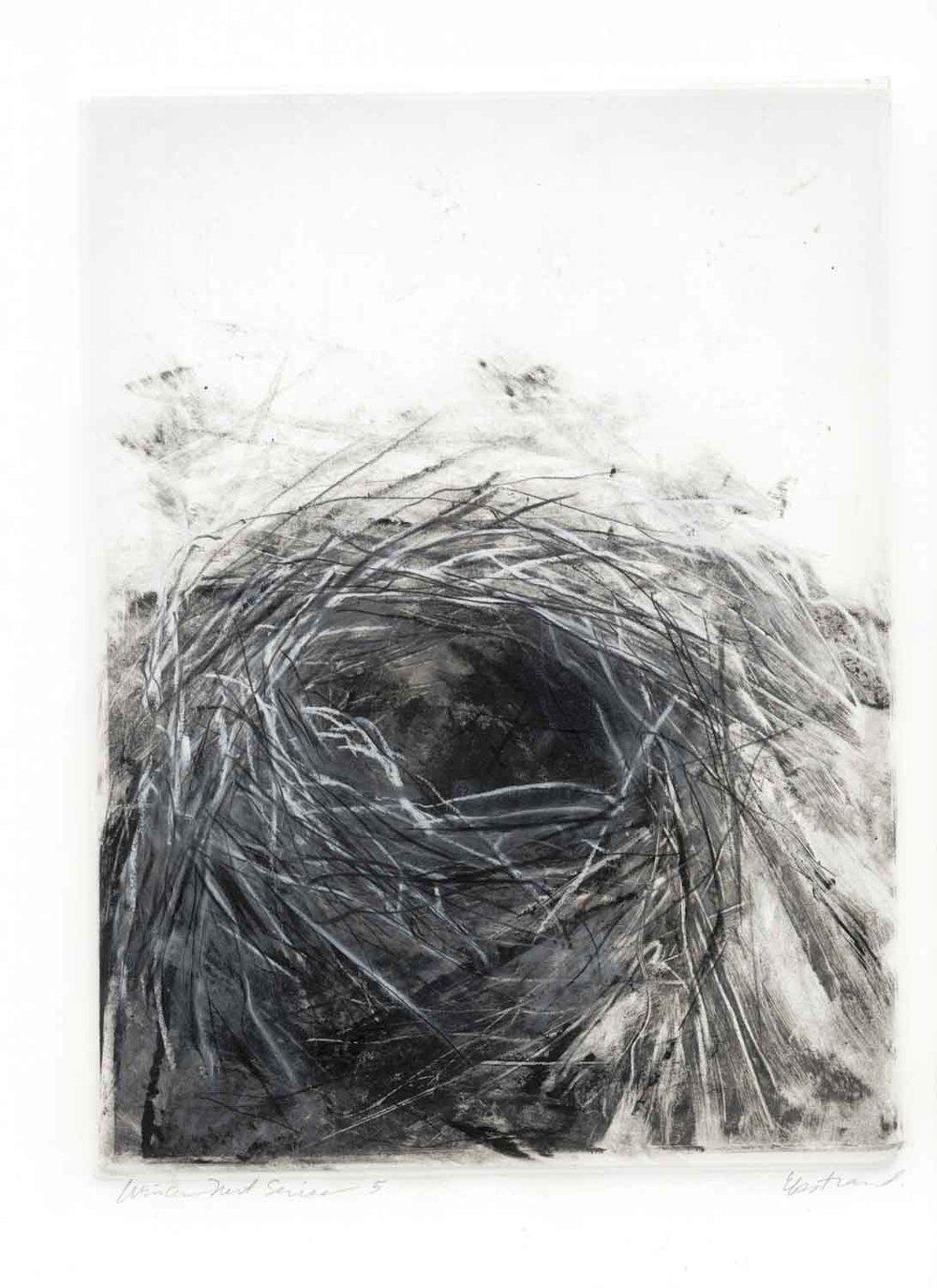 Winter Nest Series #5