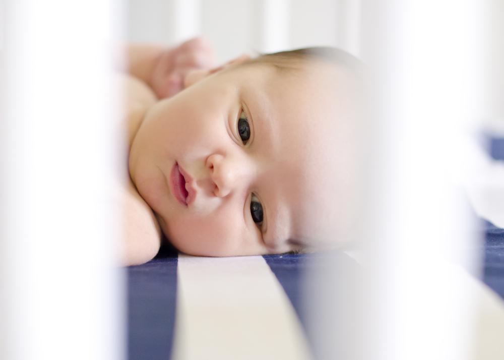 BabyWilly_08_29_2015_007.jpg