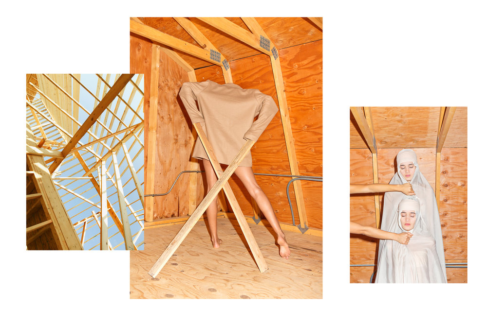 barn with twins.jpg
