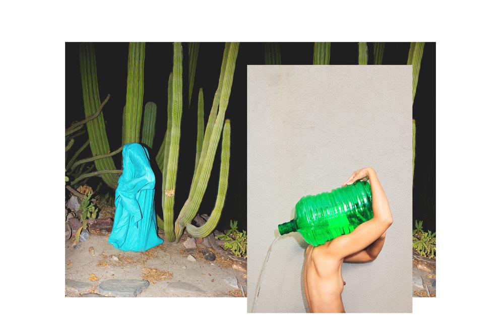 cactus greens.jpg