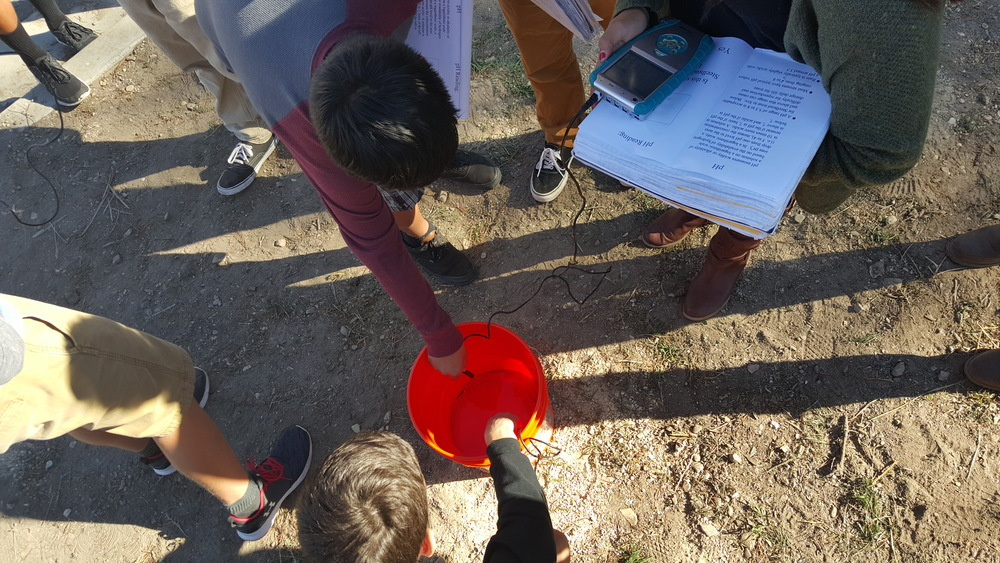 Above: Students taking water quality measurements of Arroyo Grande creek