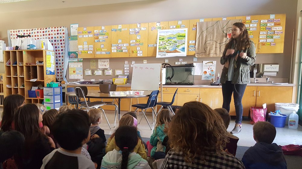 trout in the classroom teaching