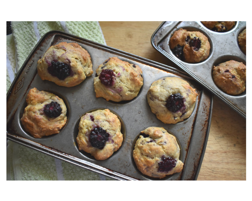 Blog graphic 500 x 400 Boysenberry Muffins Finished.png