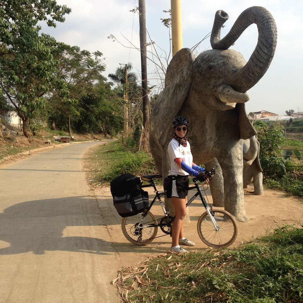 Leaving Marikina to Pasig, I exit the city along the riverfront which connects to bike lanes leading to Santolan LRT Station. This particular stretch is called Animal Trail...named for the random series of concrete animal statues.