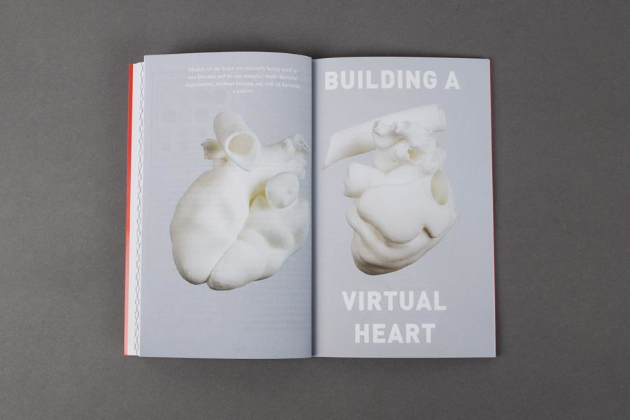 Building a Virtual Heart