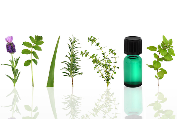 aroma-ther-herbs-oils.jpg