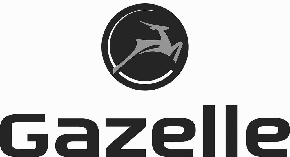 gazelle kopie.jpg