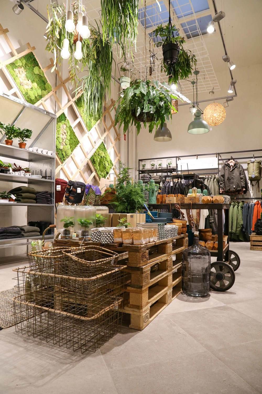 duurzame-winkel-in-antwerpen-juttu-winkel-hangende-planten-groene-muur.jpg
