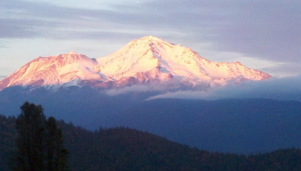 Mt. Shasta Glow