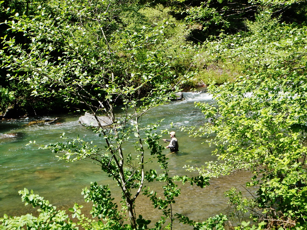 Opening Weekend McCloud River