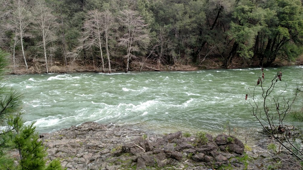 Upper Sac Is A Beast At 5000cfs