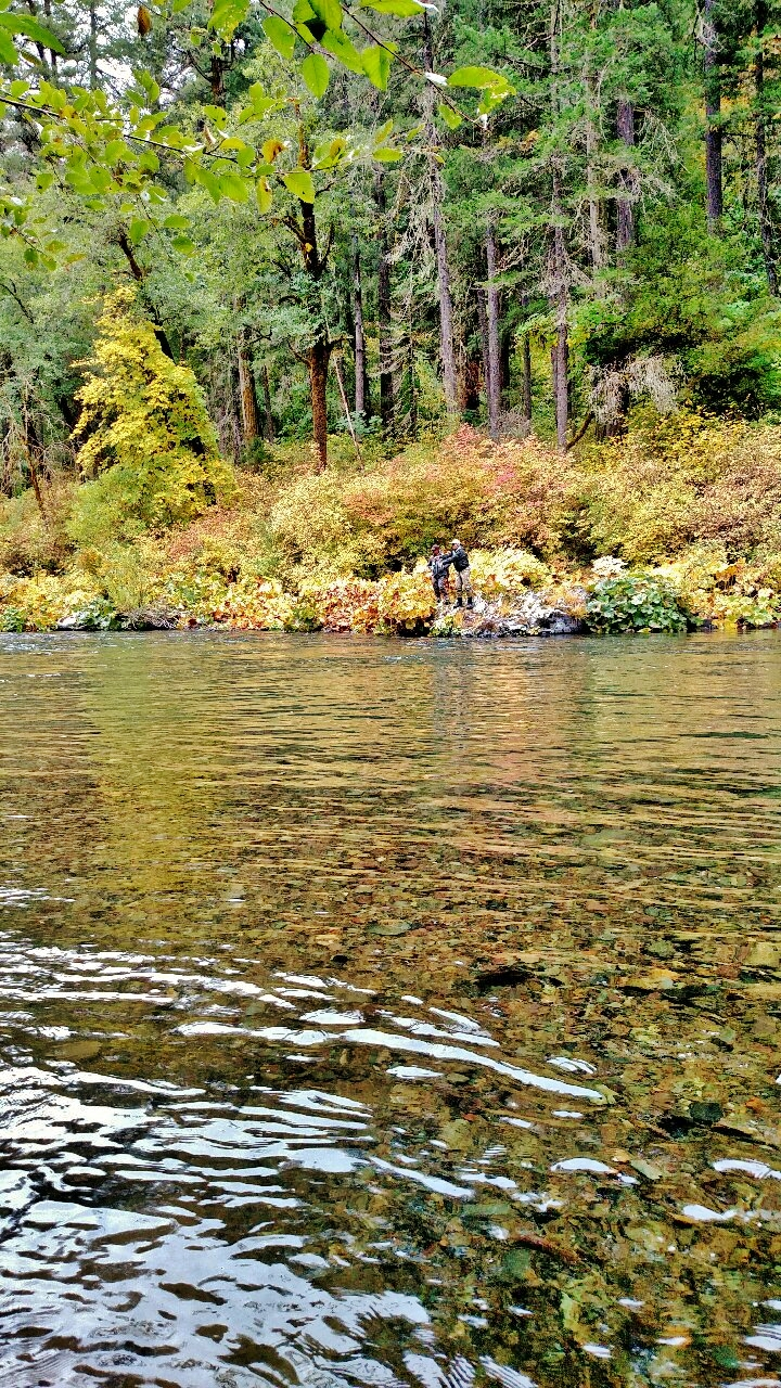 McCloud River          Photo by Rick Cox