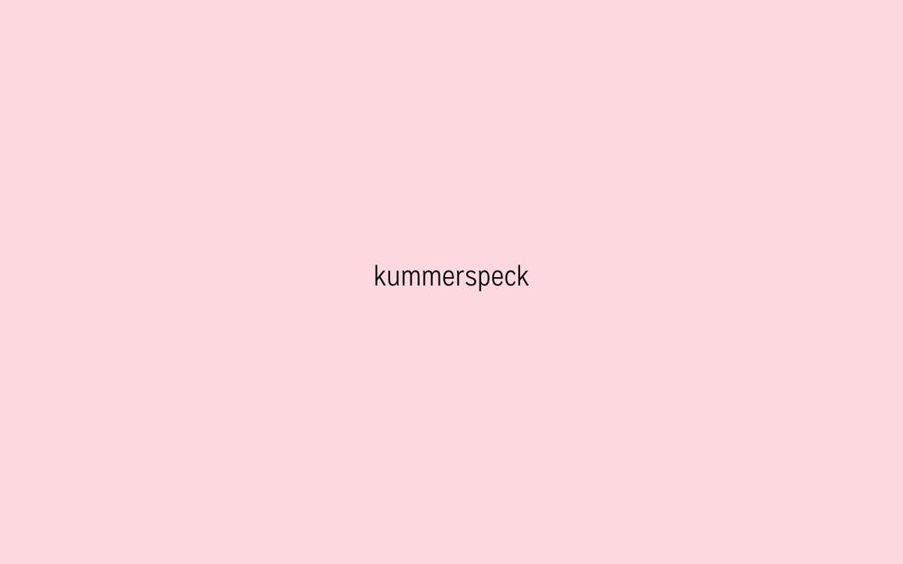 Kummerspeck - Presentatie team Obesitas Pakhuis de Zwijger v1-02.jpg