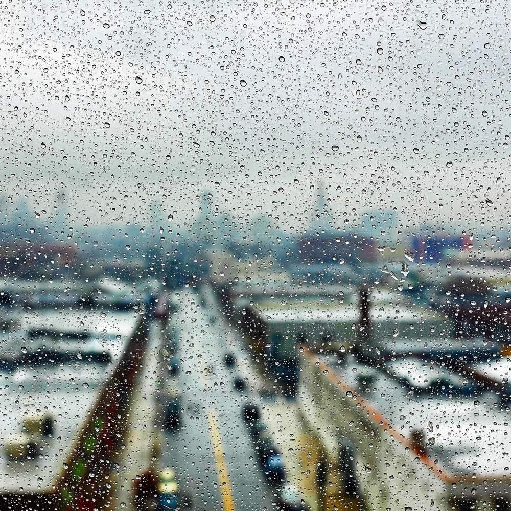 Rainy City. BKNY.