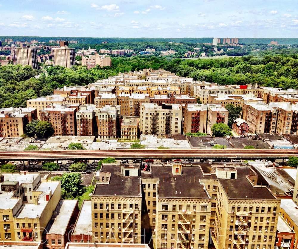 Bronx Vista (2012)