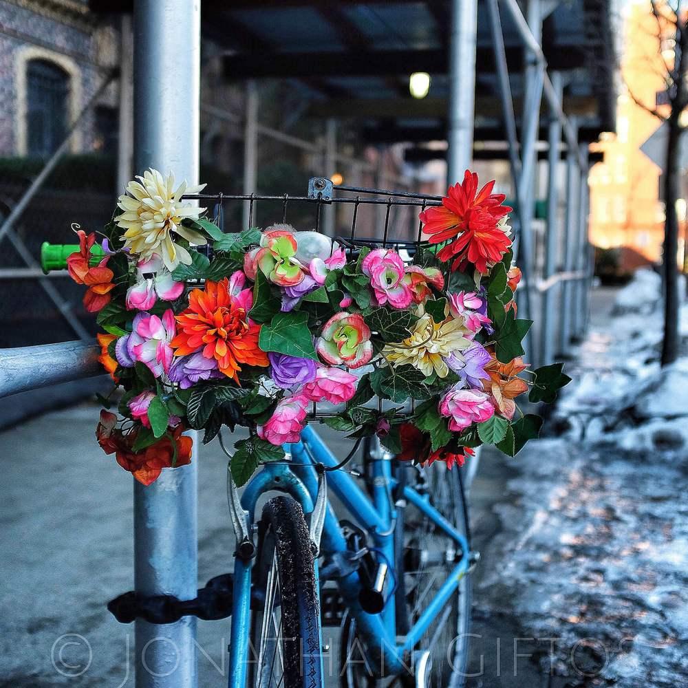 Flor de Bicicleta (2015)