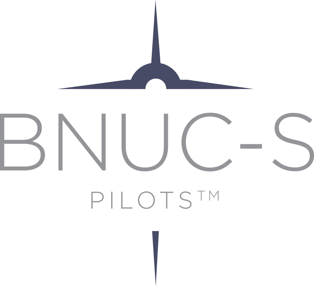 BNUCS pilots.jpg