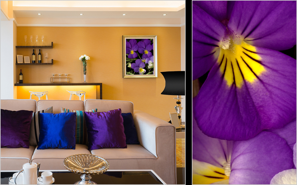 10-violet.jpg