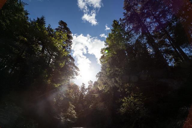 Veja mais fotos do Rio Findhorn neste link. São incríveis imagens captadas por Bernardo Borges.