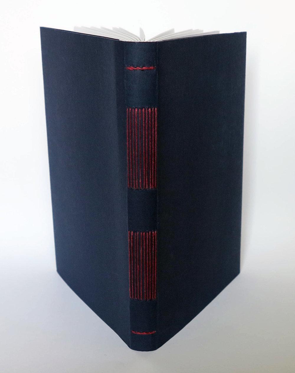 Long Stitch binding.jpg