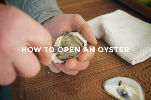 FIOF 1500px Oysters IMG_2959.jpg