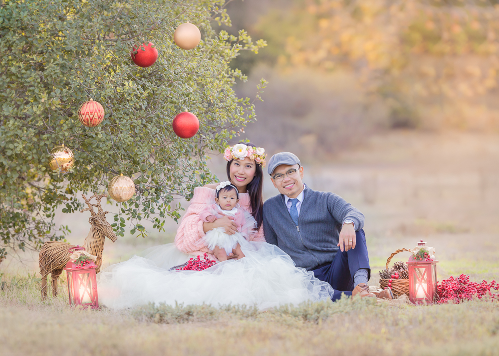first Christmas  themed  photoshoot for this beautiful family