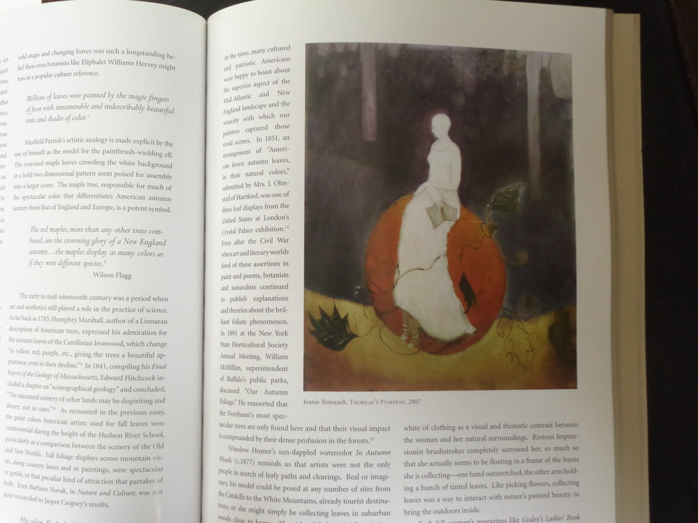 """Thoreau's Pumpkin"""