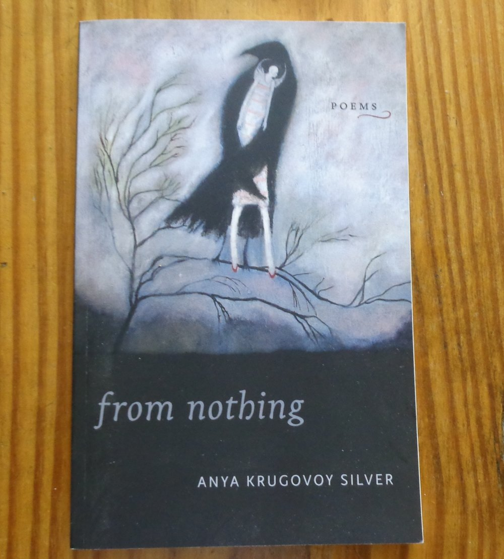 "Cover Art for ""From Nothing"", poetry by Anna Krugovoy Silver"