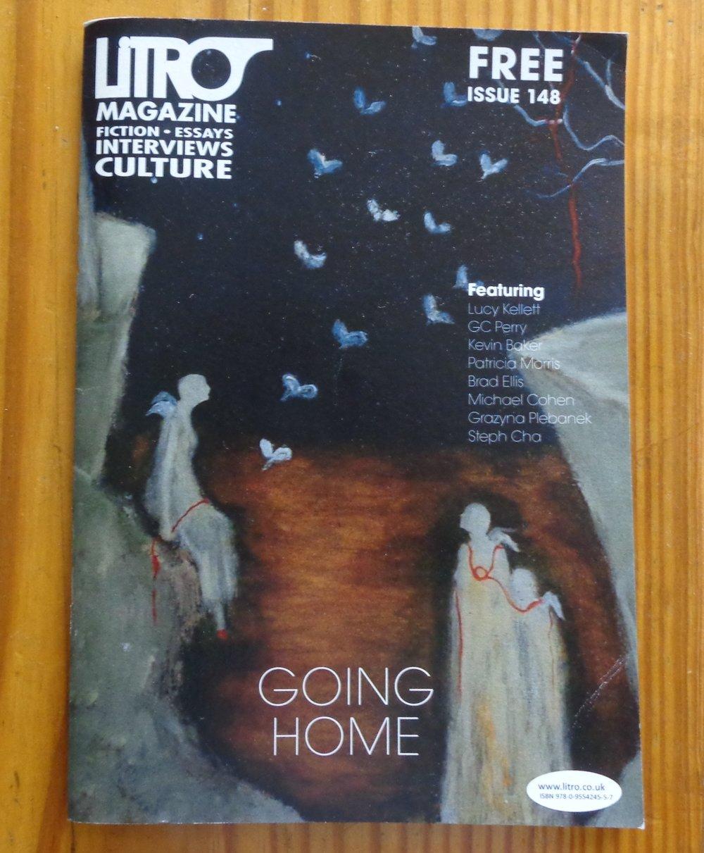 Litro Magazine, cover art