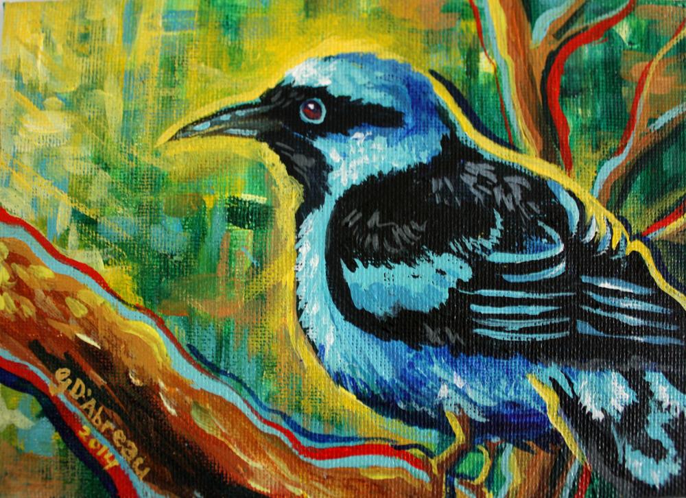 BlueDancisbird.jpg
