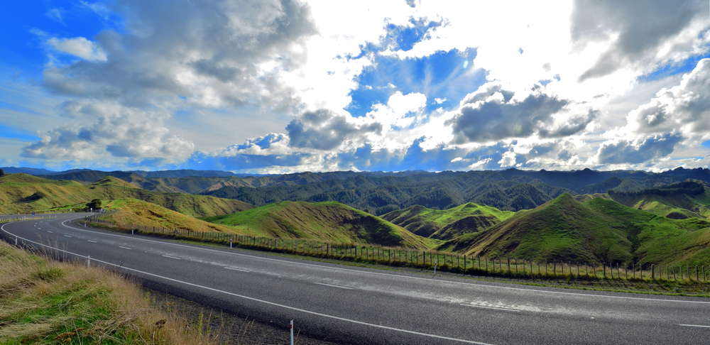 [16] Rolling Hills of New Zealand