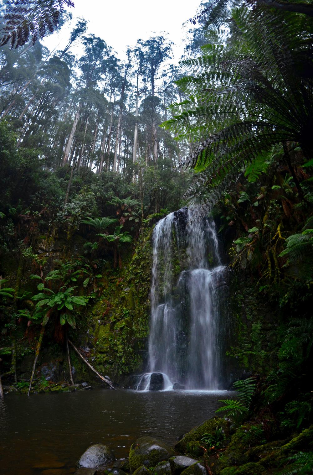 [31] Hopetoun Falls, Victoria.