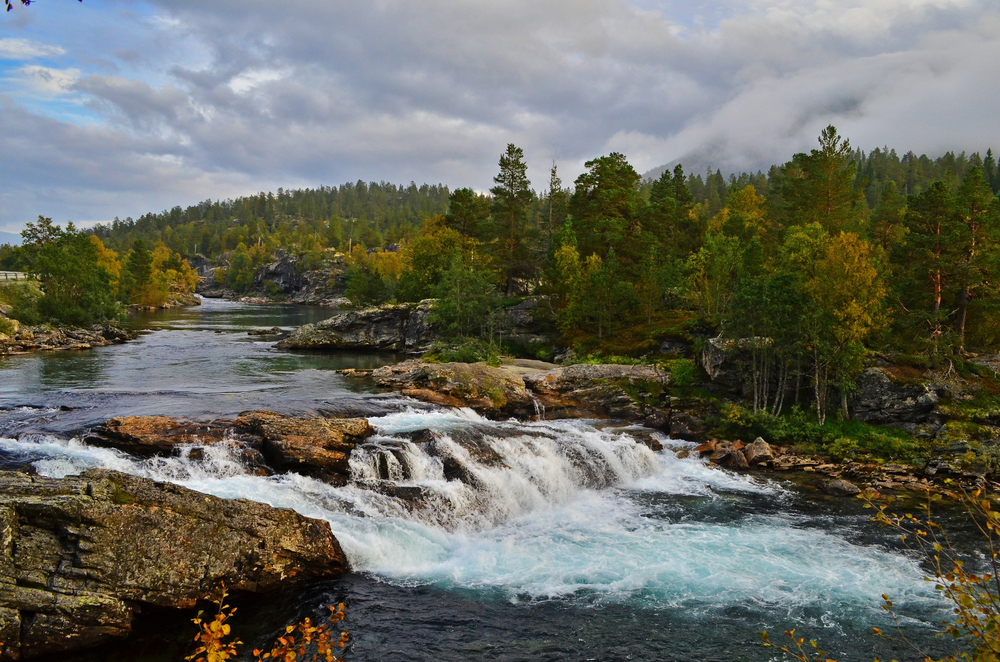 Norwegian Rivers in the Fall.