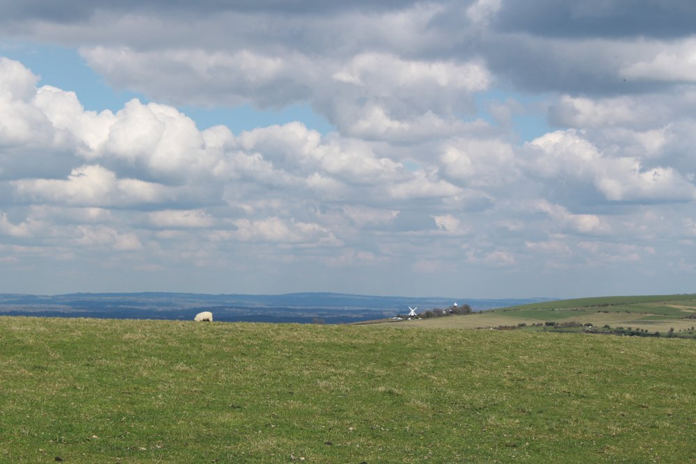 southdownsway