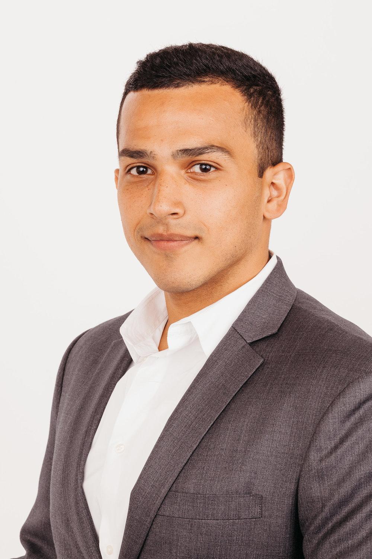 Mahmoud Hamsho
