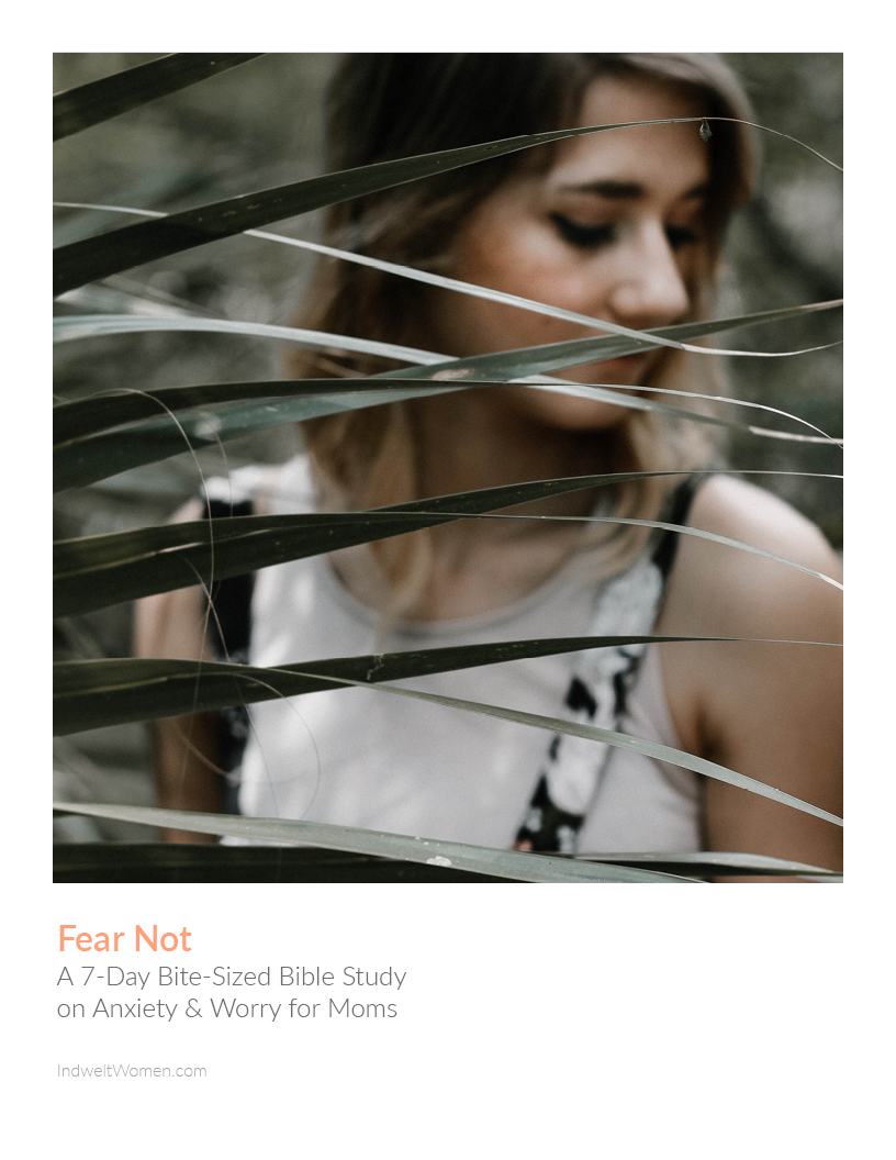 Fear Not Bible Study Cover.png