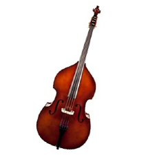 upright bass.jpg