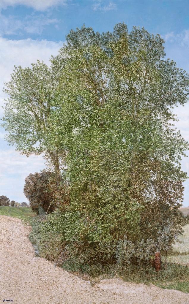 Jack Hoyer  Montana Detour Tree , 2014 Oil on linen 60.5 x 38 inches