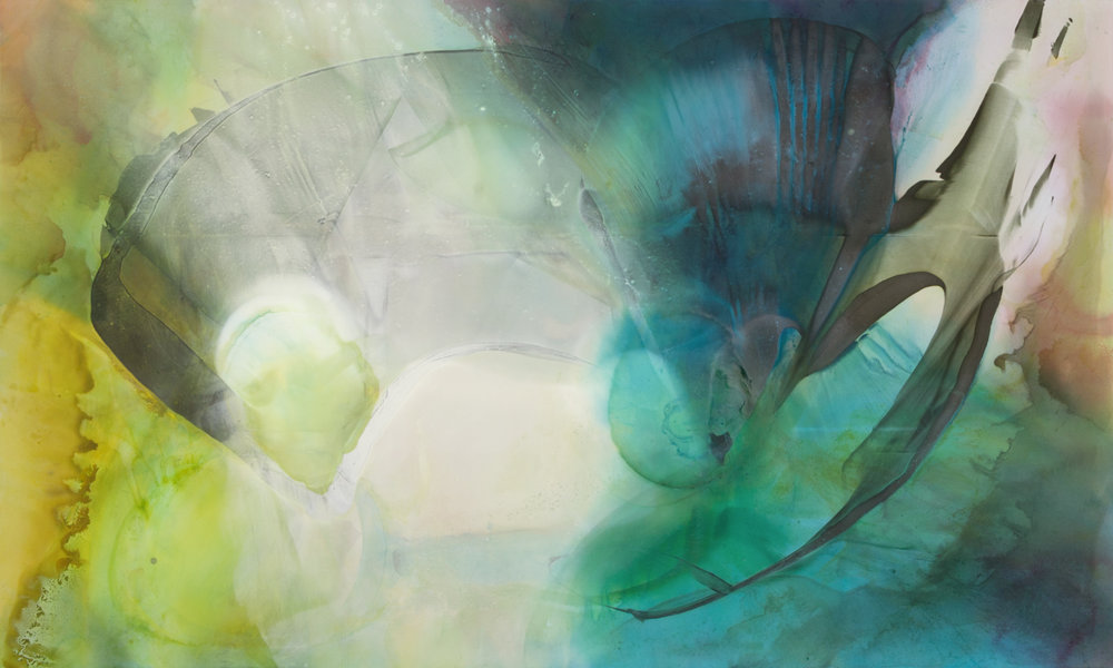 Surrender Seed , 2013-14 Acrylic on polyester 60 x 100 inches