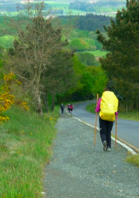 The St. James Way  (El Camino de Santiago) in Galicia