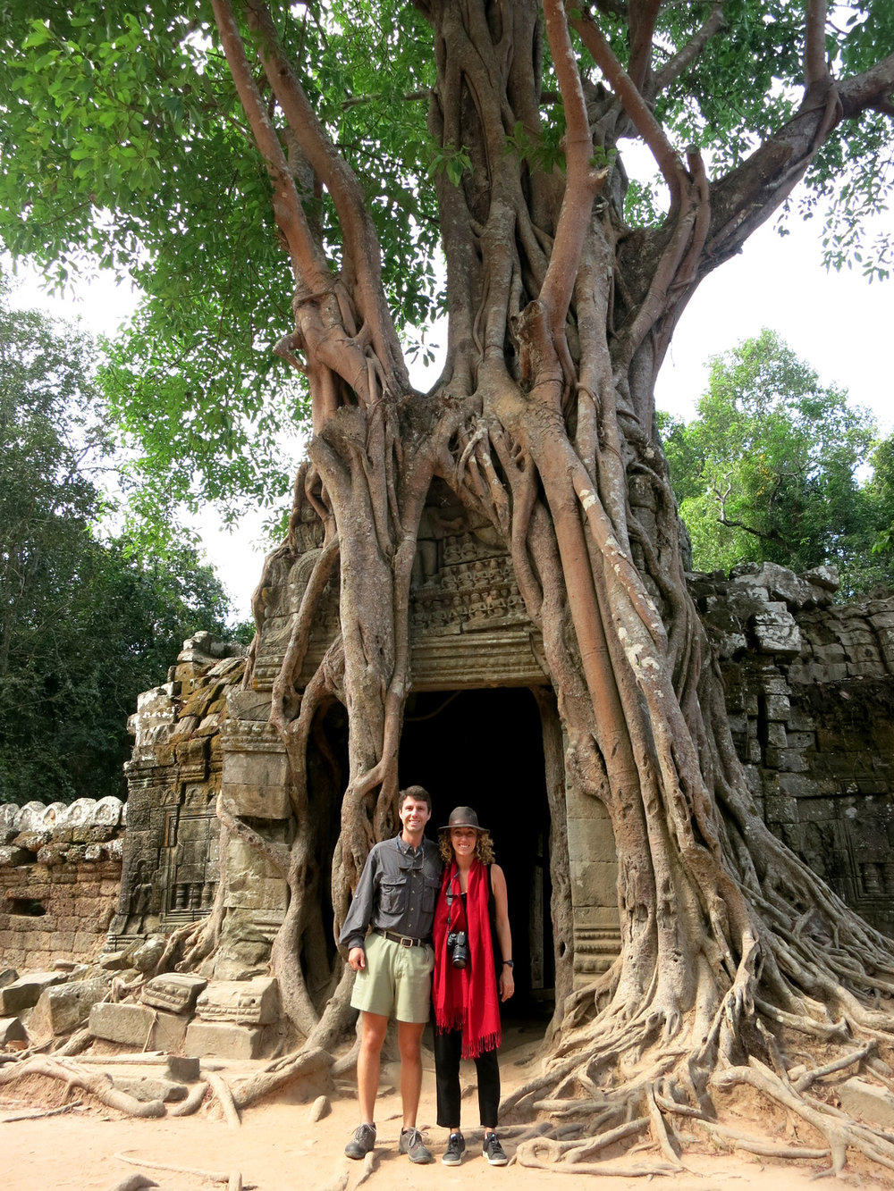 Explore Angkor Tree