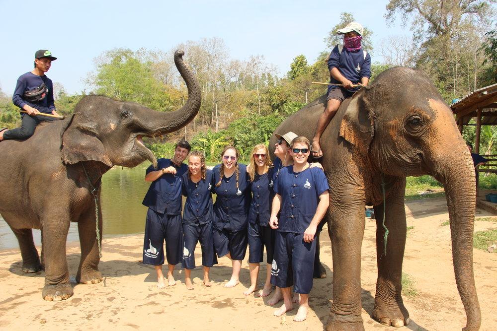 Thailand Elephant Park