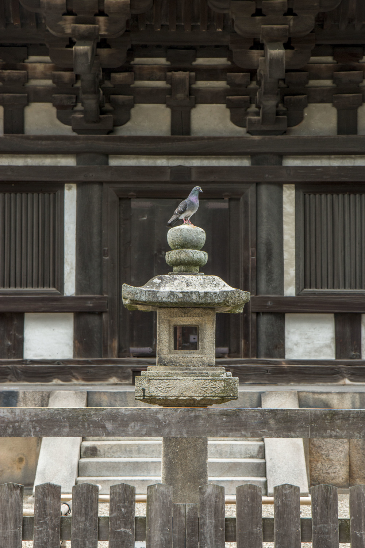 Kyoto&Tokyo_SEL_POST_56.jpg