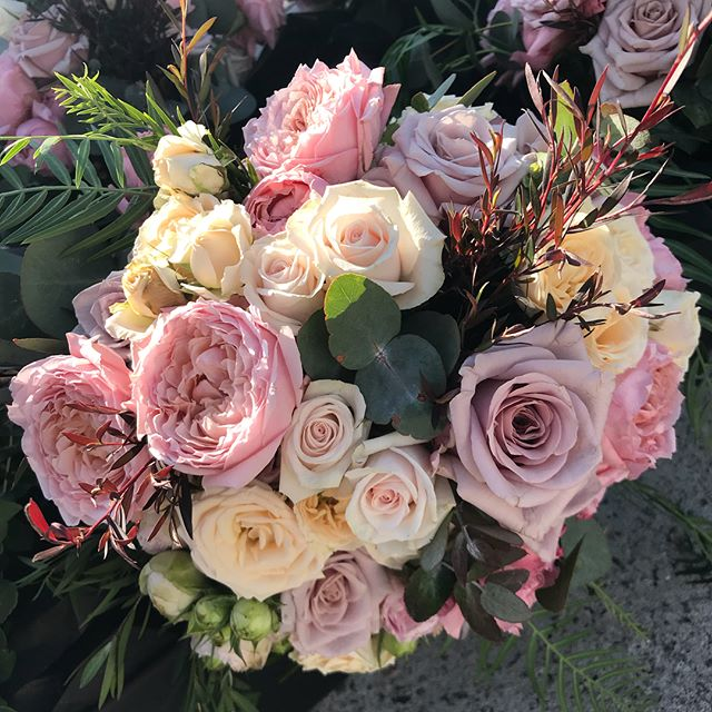 A few pics from a recent Autumn wedding in Sydney. Blush and pastels for a very special bride.