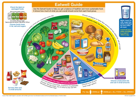 In the UK, the NHS's Eatwell Plate.